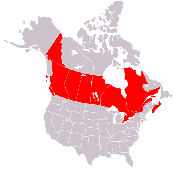 File:OCA Archdiocese of Canada.png